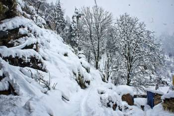 Manali A Beautiful Destination Tour