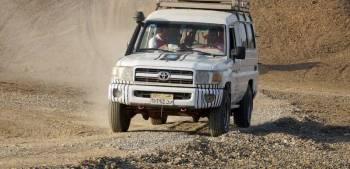 Royal Jeep Safari Tour
