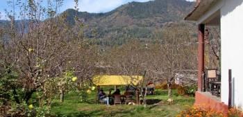 Kullu Valley Bijli Mahadev Trek Tour