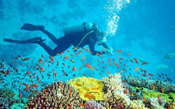 Tropical Andaman  5 Days and 4 Nights ( Free Scuba Voucher )