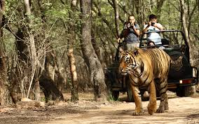 Ranthambore 2 Nights Ex Jaipur Tour