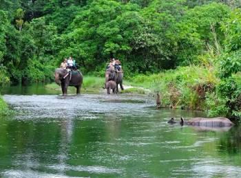 Jayanti - Buxa - Chilapata Tour