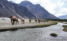 Ladakh - A Life Time Experience Tour