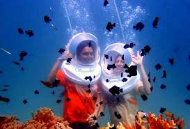 7 Night 8 Days Andaman Package
