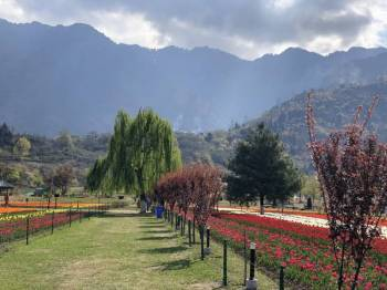 9 NIGHTS / 10 DAYS Kashmir with vaishno Maata Darshan  (By Cab)
