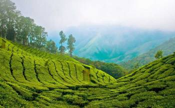 7N/ 8D Charming Kerala With Kanyakumari