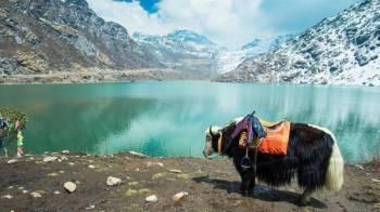 Gangtok - Tsomgo Lake - Pelling - Darjeeling Tour 6 Nights / 7 Days