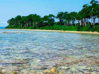 Romantic Andaman Package For Couple