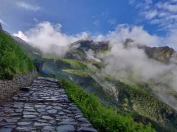 Valley of Flowers Trek with Hemkund Sahib, Uttarakhand