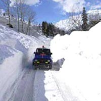 Best of Himachal Tour