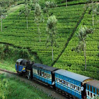 North to South India Tour