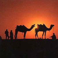 Rajasthan Tour by Car