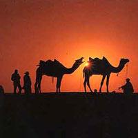 Rajasthan Tour by Car