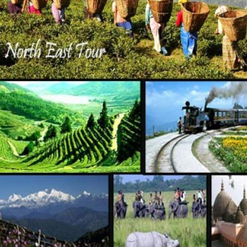 North East Package 04Night/05Days(Mystique Mountain)