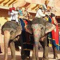Marwari Tour