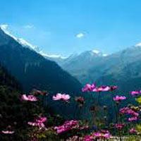Delhi - Shimla - Manali - Dharamshala - Dalhousie - Chamba - Khajjiar Volvo Tour