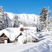 Kashmir Tour Package 05 Nights / 06 Days