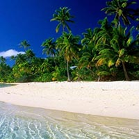Andaman Holiday Tour Package 3N/4D Flight To Flight From Chennai