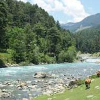 Charismatic Kashmir 5 Nights / 6 Days Tour