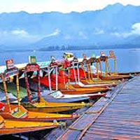 Exotic Kashmir 7 Nights / 8 Days Tour
