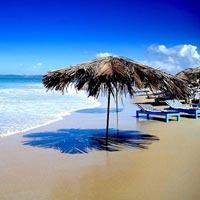 A beach for calm, hot freind