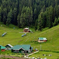Srinagar 5 Night & 6 Days Tour