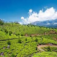 Gangtok 02 Nights /Darjeeling 02 Nights Duration : 05 Days/04 Nights