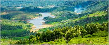 Kerala - Cochin - Munnar - Thekkady - Alleppy : 6 Days - 5 Nights Tour