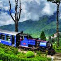Magical Darjeeling Tour