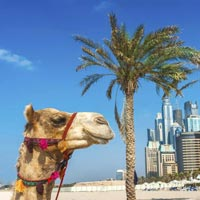 Janmastami Special Dubai @Inr 33000/-Per Person-Crown Plaza Dubai 5*