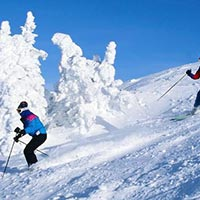 05 Night 06 Days Manali Shimla Tour