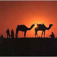 Rajasthan Elegance (Ex - Jaipur)