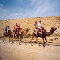 Golden Triangle Desert Tour