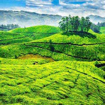 Blasting Kerala Tour Package