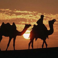 Rajasthan Thar Desert Trails Package