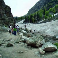 Exotic 6 Night 7 Days Kashmir Tour