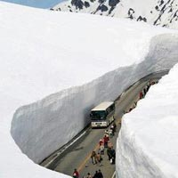 Exotic Shimla & Manali Package