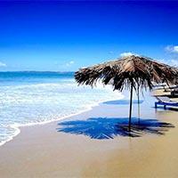 Amazing Paradise Tour