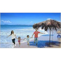 Family Tours Packages