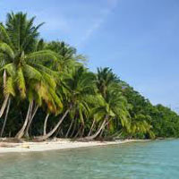 Radhanagar Beach Tour Package