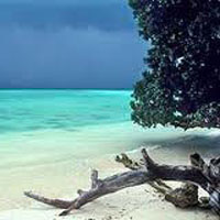 Ross Island Tour in Andaman