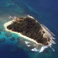 Harriet Baratang Island Tour