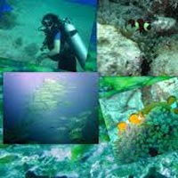 Incredible Andamans Tour - 8 Days