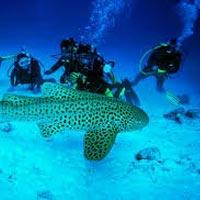 Andaman Unexplored Tour