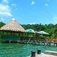 Mangroove Andaman (LTC) Package