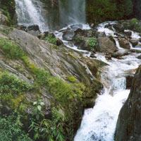 Dharamsala - Kullu - Manali Tour