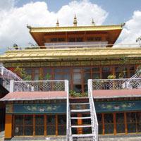 Yoga & Himalayan Trekking Tour To Dharamsala.