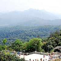 Coorg Package from Bangalore- 2 Nights/ 3 Days