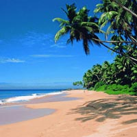 Exotic Goa holiday Package