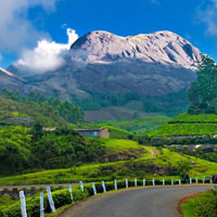 Munnar with Alleppey Backwater Package (3 Nights / 4 Days)
